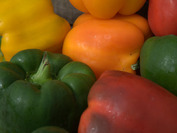 Mixed colors of bell peppers