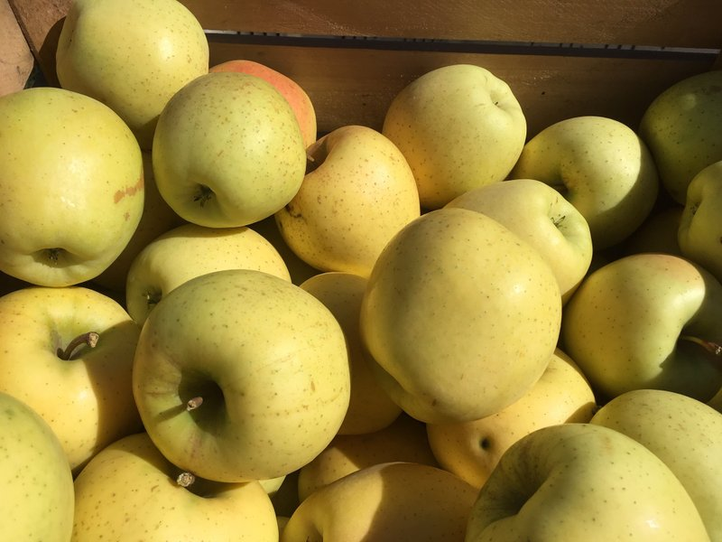 Crunch-A-Bunch apples in a crate